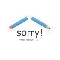Slim 2.4GHz Wireless Optical Mouse Mice + USB 2.0 Receiver for PC Laptop